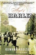 Angel of Harlem: A Novel (Many Cultures, One World)