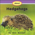 About Hedgehogs