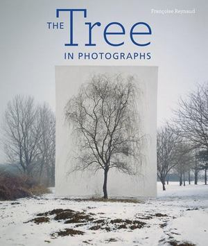 Tree in Photographs, The