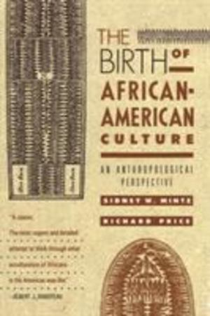 Birth of African-American Culture, The