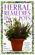 Herbal Remedies in Pots