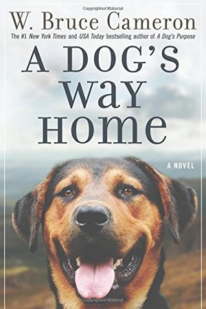Dog's Way Home, A