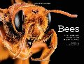 Bees: An UpClose Look at Pollinators Around the World #178