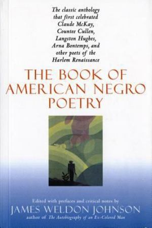 Book of American Negro Poetry, The