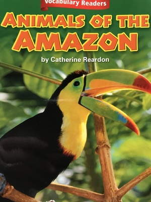 Animals of the Amazon (6)