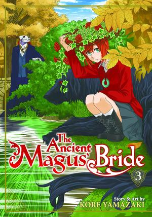 Ancient Magus' Bride vol 3