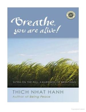 Breathe, You Are Alive