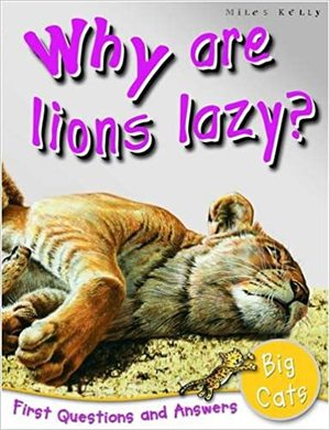 1st Questions and Answers Big Cats: Why are Lions Lazy?