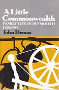 Little Commonwealth: Family Life in Plymouth Colony (Galaxy Books), A