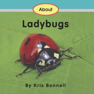 About Ladybugs