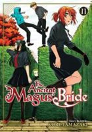 Ancient Magus' Bride Vol. 11, The