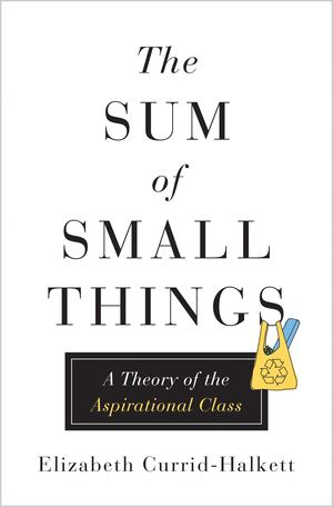Sum of Small Things - A Theory of the Aspirational Class, The
