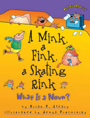 Mink, a Fink, and a Skating Rink: What is a Noun?