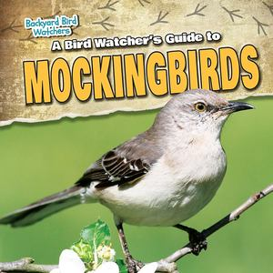 Bird Watcher's Guide to Mockingbirds, A
