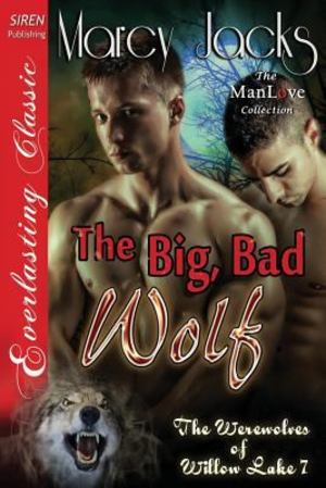Big, Bad Wolf (The Werewolves of Willow Lake, #7), The
