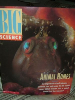 Animal Homes Big Book