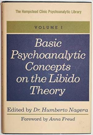 Basic psychoanalytic concepts on the libido theory