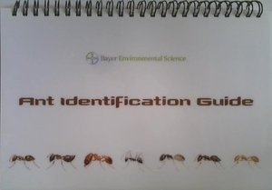Ant Identification Guide