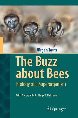 Buzz about Bees, The