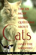 125 Most Asked Questions About Cats (And the Answers)