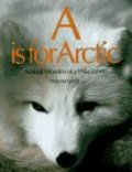 A_is for Arctic: Natural Wonders of a Polar World