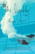 Visibles: A Novel, The