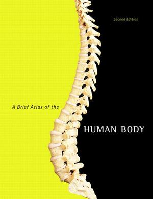 Brief Atlas of the Human Body, A