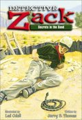 Detective Zack: Secrets in the Sand