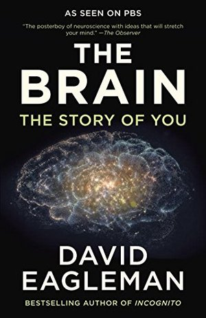 Brain: The Story of You, The