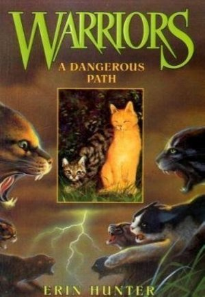 Dangerous Path (Warriors #5), A