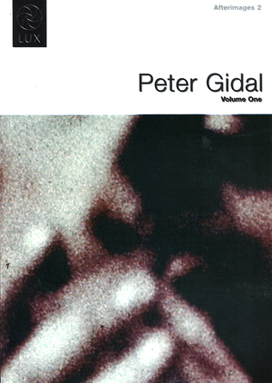 Afterimages 2: Peter Gidal Volume 1