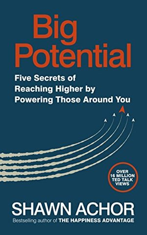 Big Potential: Five Strategies to Reach New Heights of Creativity, Productivity, Performance and Success