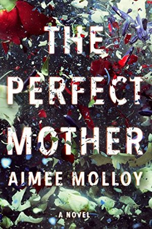 Perfect Mother: A Novel, The