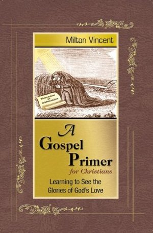 Gospel Primer for Christians: Learning to See the Glories of God's Love, A