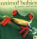 Animal Babies in Ponds and Rivers