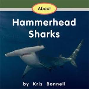About Hammerhead Sharks