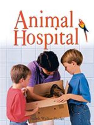 Animal Hospital Big Book