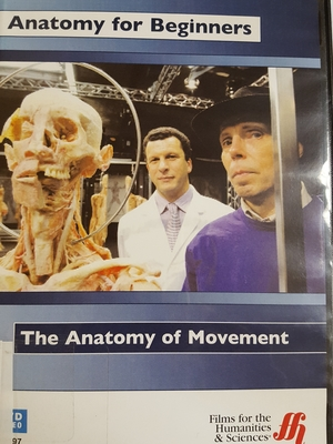 Anatomy for Beginners: The Anatomy of Movement
