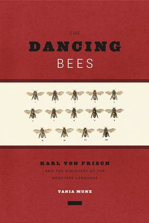Dancing Bees, The