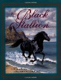 Black Stallion, The